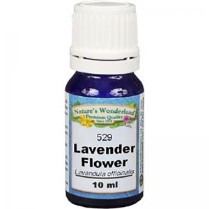 Lavender Flower Essential Oil
